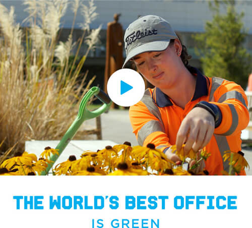 The World's Best Office is green'